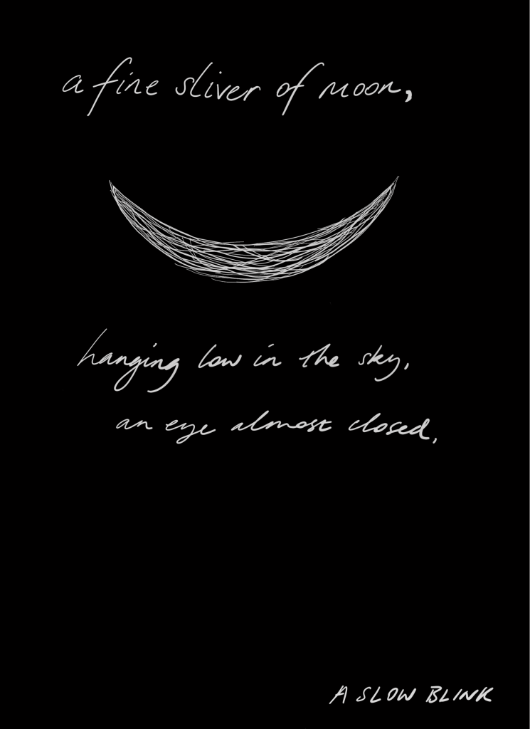 """A crescent moon, pale grey on a black background. """"A fine sliver of moon, hanging low in the sky, an eye almost closed, a slow blink."""""""