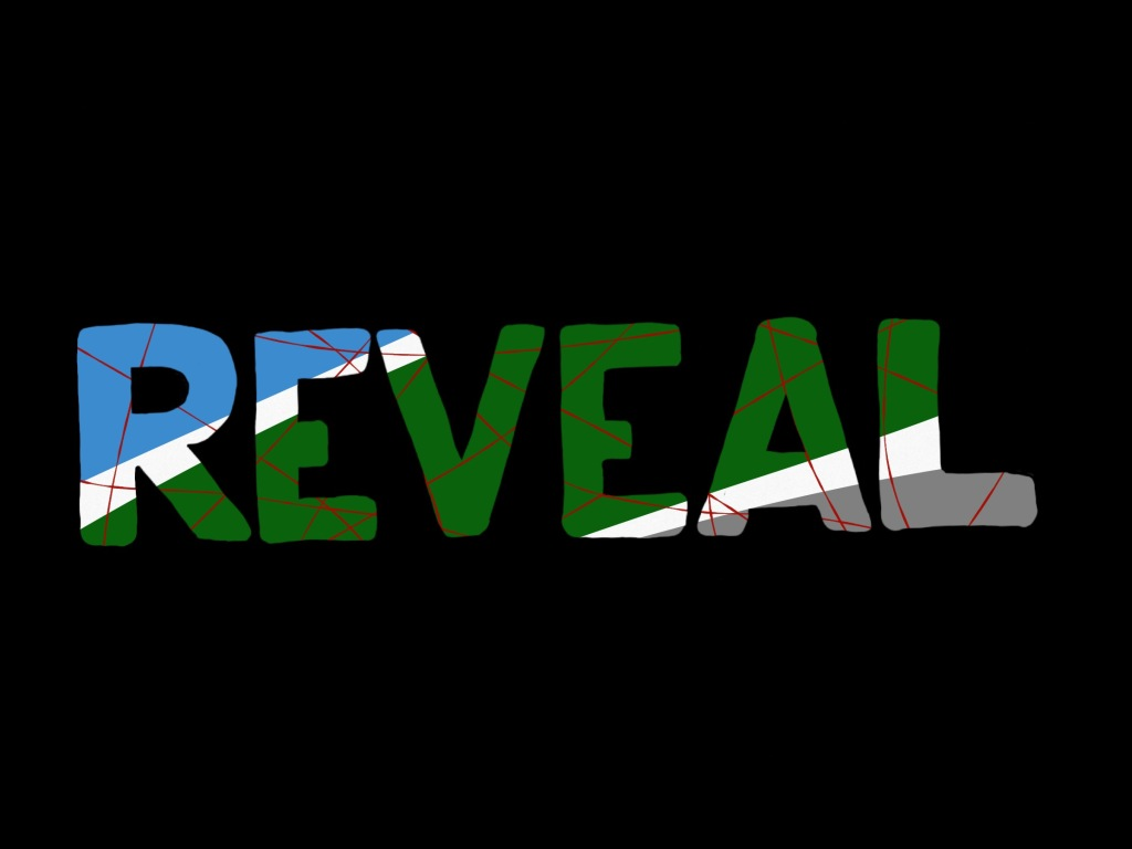 """""""REVEAL"""" in blocky capitals made of a diagonal striping of blue, green and grey separate by white, with thin red line criss-crossing against a black background."""